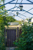 Small courtyard of privat house with wrought-iron railings gates wicket, grille for grapes and beautiful lanterns. Green bushes Royalty Free Stock Photos