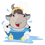 A small cow. Cartoon Stock Image