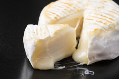 Small cow cheese melting after grill Stock Photo