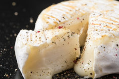 Small cow cheese melting after grill and pepper Royalty Free Stock Photography