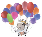 A small cow and multicolored balloons.. Cartoon. Cheerful cow with colour balloons Royalty Free Stock Image