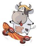 A small cow on a skateboard. Cartoon Stock Photos