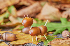 Small creature made of chestnuts and acorns Royalty Free Stock Photo