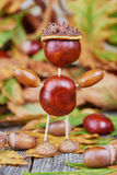 Small creature made of chestnuts and acorns Royalty Free Stock Photos