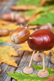 Small creature made of chestnuts and acorns Stock Photos