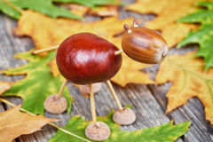 Small creature made of chestnuts and acorns Stock Images