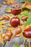 Small creatures made of chestnuts and acorns Royalty Free Stock Images