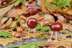 Small creatures made of chestnuts and acorns Stock Image
