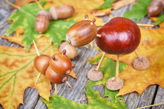 Small creatures made of chestnuts and acorns Royalty Free Stock Image