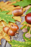 Small creatures made of chestnuts and acorns Stock Photos