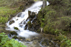 Small creek Royalty Free Stock Photo