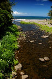 Small Creek. A small creek on West Maui Drive that mearges into the bay Royalty Free Stock Image
