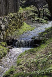 Small creek along the fence in Sibiel Romania Royalty Free Stock Image