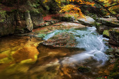 Small Creek In Autumn Mountain Forest Stock Photos