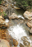 Small creek in the Catalan Pyrenees, Spain Royalty Free Stock Images
