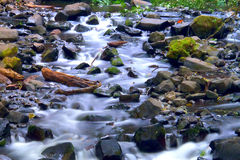 SMall creek close to Multnomah Falls Oregon Royalty Free Stock Photos