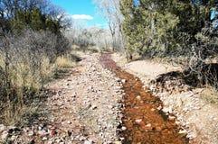 Small creek Stock Photography