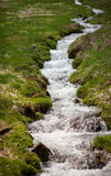 Small creek in field Royalty Free Stock Images
