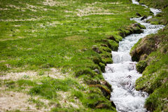 Small creek in field Stock Image