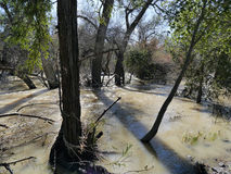Small creek floods California winter 2017 Stock Photography