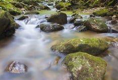 Small creek flow Stock Image