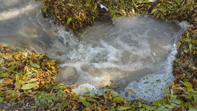 Small creek in the forest. Fallen leaves in a stream. Autumn stock video