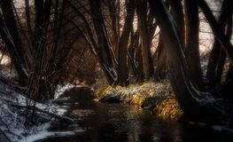 Small creek during last days of winter. With a touch of snow and sunlight royalty free stock photos