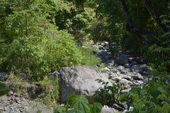 Small creek at Sitio Napan, Barangay Goma, Digos City, Davao del Sur, Philippines. This photo shows a small creek at Sitio Napan, Barangay Goma, Digos City Royalty Free Stock Images