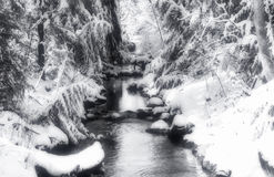 Small Creek after snow storm. Stock Image