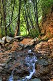 Small creek Royalty Free Stock Images