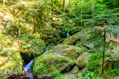 Small creek with stone bed and waterfall steps in the forest. Small creek with a stone bed and waterfall-like steps in a forest during summer. The stones stock photos