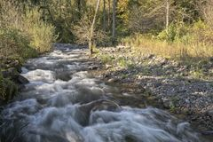 Small creek in Washington state. Stock Images