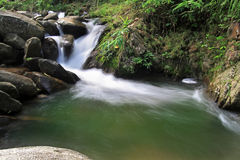Small creek waterfall Royalty Free Stock Images