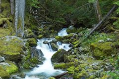 Small Creek Waterfalls Royalty Free Stock Images