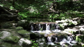 Small Creek Waterfalls In Shadow And Light. Small Waterfalls Surrounded By Green Plants Mossy Rocks stock video footage