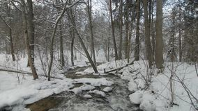 Small creek in winter snowy forest among snow banks. Camera tilt.Lithuania stock footage