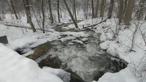 Small creek in winter snowy forest among snow banks. Camera tilt.Lithuania stock video footage