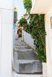 Small cretan village in Crete  island, Greece. Stock Image