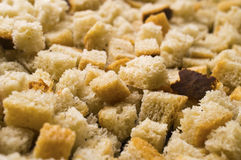 Small croutons Royalty Free Stock Image