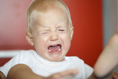 Small, crying and raging toddler having a temper tantrum. Small, crying and kicking toddler having a temper tantrum at home, defying parents. Childhood stock images