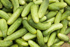 Small cucumbers at a Cambodian Market Royalty Free Stock Images