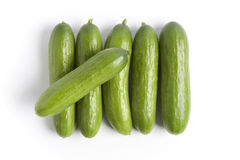 Small cucumbers on a row Stock Photo