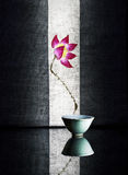 A small cup of turquoise Royalty Free Stock Images