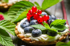 Small cupcake with fruits in forest. Closeup of small cupcake with fruits in forest Royalty Free Stock Image