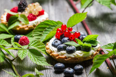 Small cupcake with fruits in forest. On old wooden table Stock Photography