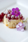 Small cupcake with red currants Royalty Free Stock Images