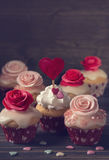 Small cupcakes with roses Stock Image