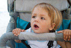 Small curious boy in a carriage Stock Images