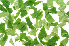 Small cut slices of leaves Stock Photography