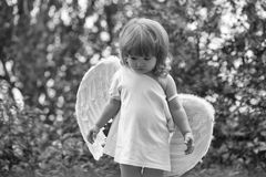 Small boy in angel wings. Small cute baby boy with blonde long hair in white feathered angel wings and cloth outdoor on green natural background Stock Photography